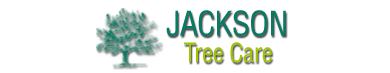 Jackson Tree Care Logo Design